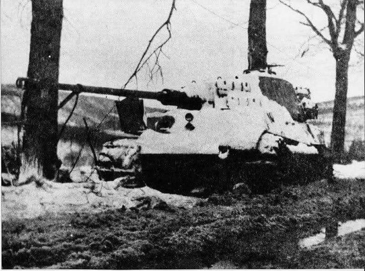 8f80a5fca5d70bbbfd3596eab0997aa9--tiger-ii-ww-tanks
