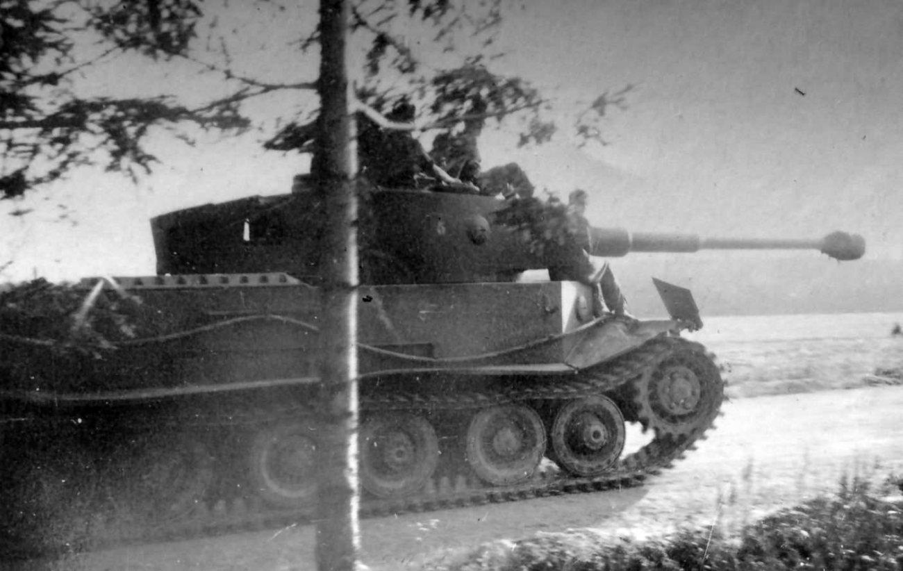 VK4501_Tiger(P)